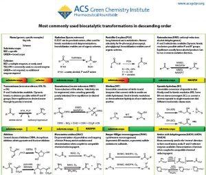 Biocatalysis Sheet Image